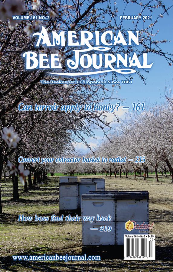 مجله جدید امریکن بی جورنال