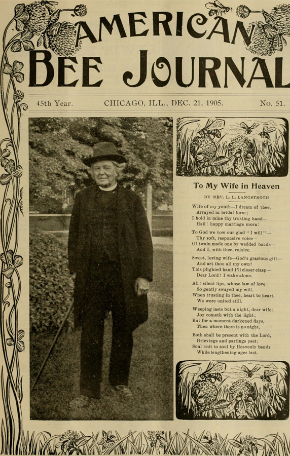 مجله قدیمی امریکن بی جورنال عصر جدید تولید محتوا